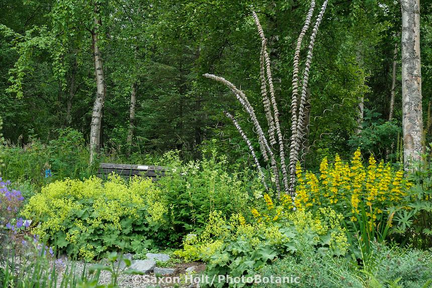 Sculpture - 'Alaska Ocotillo' by Laura Walter and Michael Packard in Alaska Botanical Garden, Anchorage