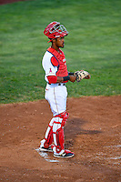 Angel Genao (14) of the Orem Owlz during the game against the Grand Junction Rockies in Pioneer League action at Home of the Owlz on July 6, 2016 in Orem, Utah. The Rockies defeated the Owlz 5-4 in Game 2 of the double header.   (Stephen Smith/Four Seam Images)
