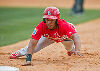 13 March 2016: St. Louis Cardinals outfielder Magneuris Sierra, ranked the 4th Top Prospect in the Cardinals organization for 2016 by MLB, dives safely back to first during a pre-season Spring Training game against the Washington Nationals at Space Coast Stadium in Viera, Florida. The teams played to a 4-4 draw in Grapefruit League play. Mandatory Credit: Ed Wolfstein Photo *** RAW (NEF) Image File Available ***