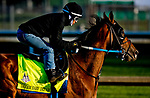 LOUISVILLE, KY - APRIL 29: Dream Baby Dream exercises in preparation for the Kentucky Derby at Churchill Downs on April 29, 2018 in Louisville, Kentucky. (Photo by Scott Serio/Eclipse Sportswire/Getty Images)