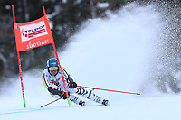 20th December 2020; Alta Badia, South-Tyrol, Italy; International Ski Federation World Cup Alpine Skiing, Giant Slalom; Alexander Schmid (GER)
