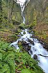 Wahkeena Falls Columbia River Gorge Oregon HDR High dynamic range art
