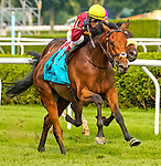 August 07, 2021: State of Rest (IRE) #9, ridden by jockey John Velazquez wins the $1 million Saratoga Derby Invitational Stakes (Grade 1) on the turf at Saratoga Race Course in Saratoga Springs, N.Y. on August 7, 2021. Dan Heary/Eclipse Sportswire/CSM