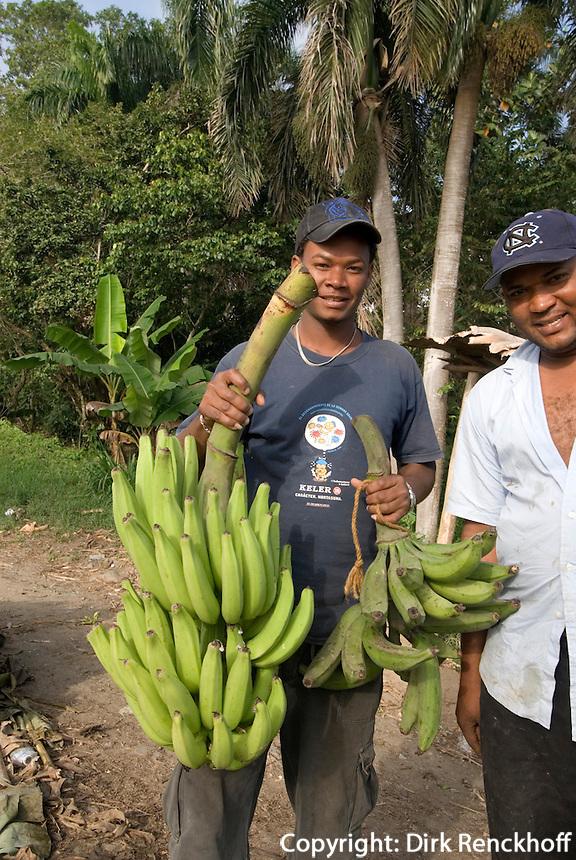 Dominikanische Republik, Bananenplantage bei Nagua