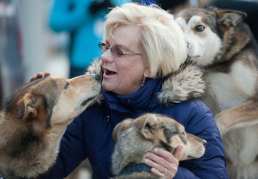 Iditarod fan Nancy Alstrand greets a dog team as they wait to run at the ceremonial start of the 43rd Iditarod dog sled race in downtown Anchorage. Alstrand flies to Alaska each year to visit her brother and attend the start of the Iditarod. 79 mushers made their way 11 miles through the slushy streets of Anchorage in unseasonably warm weather and early rain. This year's official re-start will begin in Fairbanks because of poor trail conditions in Southcentral Alaska.