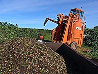Colheita mecanizada de cafe, em Luiz Eduardo Magalhães. Bahia. 2008. Foto de Alf Ribeiro.