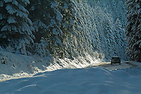 Car driving on a snowy mountain road among fir trees, Chabanon, French Alps, France.
