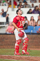 Johnson City Cardinals catcher Chris Chinea (22) on defense against the Bristol Pirates at Howard Johnson Field at Cardinal Park on July 6, 2015 in Johnson City, Tennessee.  The Cardinals defeated the Pirates 8-2 in game two of a double-header. (Brian Westerholt/Four Seam Images)