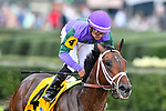 HOT SPRINGS, AR - MARCH 17: #4 Magnum Moon with jockey Luis Saez .Rebel Stakes at Oaklawn Park on March 17, 2018 in Hot Springs, Arkansas. (Photo by Ted McClenning/Eclipse Sportswire/Getty Images)