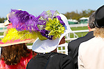 March 28, 2015: Mervin H. Muniz Jr. Handicap / Louisiana Derby Day at the New Orleans Fairgrounds. Steve Dalmado/ESW/CSM