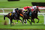 ELMONT, NY - OCTOBER 08: Profiteer #9, ridden by John R. Velazquez, Mohican #7, ridden by Joel Rosario, and Panama Papers, ridden by Christopher P. DeCarlo, race to the finish of the Michael J. Barosa Memorial Race, on Jockey Club Gold Cup Day at Belmont Park on October 8, 2016 in Elmont, New York. (Photo by Douglas DeFelice/Eclipse Sportswire/Getty Images)