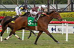 January 30, 2021:  White Frost with jockey Junior Alvarado on board, wins the Sweetest Chant GIII Stakes at Gulfstream Park in Hallandale Beach, Florida. LizLamont/Eclipse Sportswire/CSM