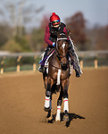 Keepmeinmind, trained by Robertino Diodoro, exercises in preparation for the Breeders' Cup Juvenile at Keeneland 11.03.20.