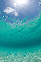 Looking up towards the sky through clear warm Caribbean water<br /> Honeymoon Beach<br /> Virgin Islands National Park<br /> St. John<br /> U.S. Virgin Islands