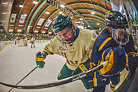 29 December 2013:  University of Vermont Catamount Defenseman Rob Hamilton, a Freshman from Calgary, Alberta, works the corner in the first period against the Canisius College Golden Griffins at Gutterson Fieldhouse in Burlington, Vermont. The Catamounts defeated the Golden Griffins 6-2 to capture the 2013 Sheraton/TD Bank Catamount Cup NCAA Hockey Tournament for the second straight year. Mandatory Credit: Ed Wolfstein Photo *** RAW (NEF) Image File Available ***