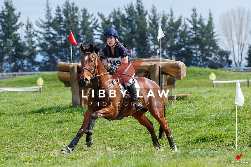 NZL-Danielle Adamson rides King Solomon during the Cross Country for the Livamol CCN2*-S. 2020 NZL-Eventing Hawkes Bay (NHB) Horse Trial. Flaxmere, Hawkes Bay. Sunday 4 October. Copyright Photo: Libby Law Photography