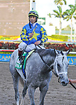 06 February 2010:  Take the Points with jockey Edger Prado wins the The Gulfstream Park handicapp Stakes but was DQ at Gulfstream Park in Hallandale Beach, FL.