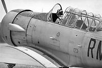 - North American T-6G Texan training aircraft, Italian Air Force, 1976<br /> <br /> - aereo da addestramento North American T-6G Texan, AMI Aeronautica Militare Italiana, 1976
