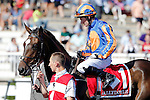 ARLINGTON HEIGHTS, IL - AUGUST 13: Ballydoyle #1, ridden by Seamie Heffernan, during the post parade before the Beverly D. Stakes at Arlington International Racecourse on August 13, 2016 in Arlington Heights, Illinois. (Photo by Jon Durr/Eclipse Sportswire/Getty Images)