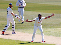 Miguel Cummins of Kent celebrates taking the wicket of Luke Wells (background) during Kent CCC vs Lancashire CCC, LV Insurance County Championship Group 3 Cricket at The Spitfire Ground on 22nd April 2021