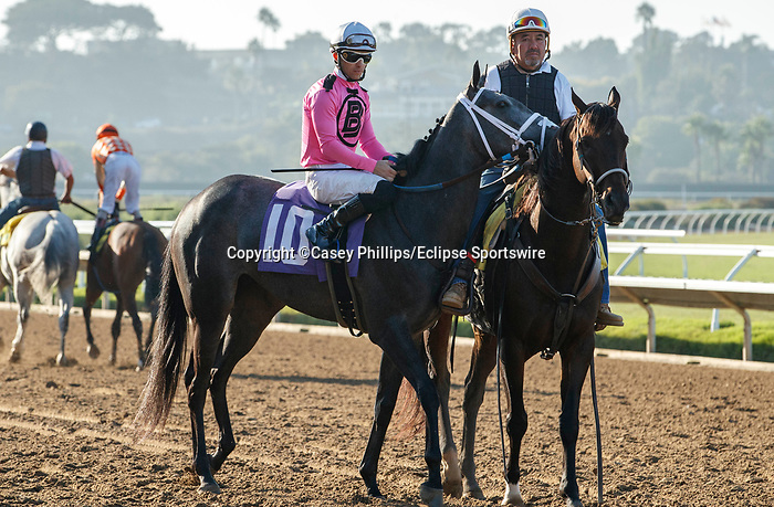 DEL MAR, CA  SEPTEMBER 5:#10 Liam's Dove, ridden by Kyle Frey, in the post parade of the Del Mar Juvenile Fillies Turf on September 5, 2021 at Del Mar Thoroughbred Club in Del Mar, CA.  (Photo by Casey Phillips/Eclipse Sportswire/CSM)
