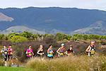 Shoe Clinic Half Marathon