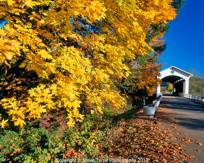 Earnest covered bridge spanning the Mohawk River in Lane County, Oregon