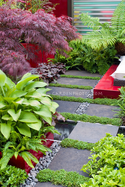 Stone Walkway Through Perennials Patio Peaceful Oriental Style Design Plant Flower Stock Photography Gardenphotos Com