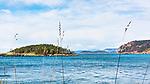 Deception Pass, Deception Island, Fidalgo Island and Saddlebag Island on a spring day.  Washington State, USA.