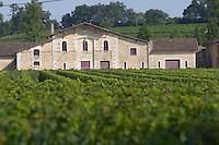 Vineyard. Winery building. Chateau Laroze, Saint Emilion, Bordeaux France
