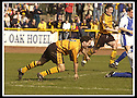 06/04/2002                 Copyright Pic : James Stewart .Ref :     .File Name : stewart-alloa v qos   03.ROSS HAMILTON CELEBRATES AFTER SCORING ALLOA'S THIRD GOAL......James Stewart Photo Agency, 19 Carronlea Drive, Falkirk. FK2 8DN      Vat Reg No. 607 6932 25.Office     : +44 (0)1324 570906     .Mobile  : + 44 (0)7721 416997.Fax         :  +44 (0)1324 630007.E-mail  :  jim@jspa.co.uk.If you require further information then contact Jim Stewart on any of the numbers above.........