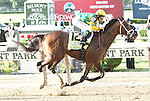 Longshot Palace Malice with Mike Smith wins the 145th running of the Grade I Belmont Stakes for 3-year olds, going 1 1/2 miles,at Belmont Park.  Trainer Todd Pletcher  Owners Dogwood Stable
