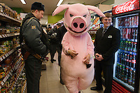 Moscow, Russia, 03/03/2011..Police and store security watch as members of health campaign group Pigs Against check the sell-by dates and quality of food in a city centre supermarket while dressed in pig costumes.