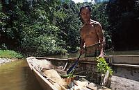 Asie/Malaisie/Bornéo/Sarawak: Chez les Dayak - Récolte des fougères Pakis base de la cuisine de la jungle.