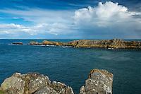Europe/France/Bretagne/35/Ille et Vilaine/Côte d'Emeraude/Cancale: Pointe du Grouin - Panorama vers l'Ile des Landes //   <br /> // France, Ille et Vilaine, cote d'emeraude (Emerald Coast), Cancale,The Pointe du Grouin   and Landes Island