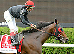 Point of Entry (no. 1), ridden by John Velazquez and trained by Claude McGaughey III, wins the 112th running of the grade 1 Manhattan Handicap for three year olds and upward on June 8, 2013 at Belmont Park in Elmont, New York.  (Bob Mayberger/Eclipse Sportswire)