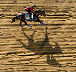 May 13, 2021: Kentucky Derby winner Medina Spirit, with exercise rider Umberto Gomez, prepares for the Preakness Stakes at Pimlico Race Course under the spectre of a report of a positive test after the Run for the Roses at Churchill Downs almost two weeks ago. Scott Serio/Eclipse Sportswire/CSM
