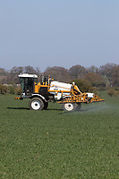 19-4-2021 Spraying Winter wheat at growth rate T1  <br /> ©Tim Scrivener Photographer 07850 303986<br />      ....Covering Agriculture In The UK....