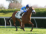14 October.  Wild About Marie and Robby Albarado win the 15th running of the Buffalo Track Franklin County (Listed) $100,000 at Keeneland Racecourse for owner Dawn and Ike Thrash and trainer Jeff Thornbury.