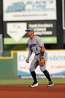 Winston-Salem Dash second baseman Mitch Roman (4) in the field during a game against the Myrtle Beach Pelicans at Ticketreturn.com Field at Pelicans Ballpark on July 23, 2018 in Myrtle Beach, South Carolina. Winston-Salem defeated Myrtle Beach 6-1. (Robert Gurganus/Four Seam Images)