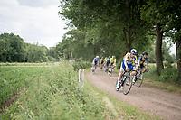 Piet Allegaert (BEL/Sport Vlaanderen - Baloise)<br /> <br /> Dwars door het Hageland 2019 (1.1)<br /> 1 day race from Aarschot to Diest (BEL/204km)<br /> <br /> ©kramon