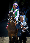 June 07, 2014:  Close Hatches and Joel Rosario is lead to the track for the Ogden Phipps Stakes by trainer Bill Mott at Belmont Park in Elmont New York. Alex Evers/ESW/CSM