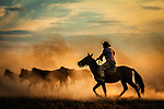Cowboys surrounded by dust by Mahmut Emre Erol