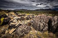 Petroglyphs at Three Rivers Petroglyph Site in New Mexico's Tularosa Basin
