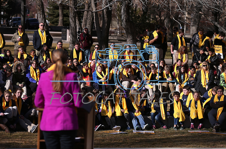 """Dignitaries speak to several hundred people at a """"Nevada Supports School Choice"""" rally in support of educational choices on the Capitol grounds in Carson City, Nev., on Wednesday, Jan. 28, 2015.<br /> Photo by Cathleen Allison"""