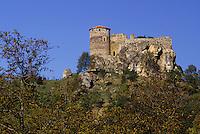 Europe/France/Auverne/63/Puy-de-Dôme/Busseol: Le Château de Busseol