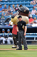 Zooperstars Tiger Woodschuck and home plate umpire Reed Basner during a game between the Rome Braves and the Asheville Tourists at McCormick Field on June 24, 2017 in Asheville, North Carolina. The Tourists defeated the Braves 6-5. (Tony Farlow/Four Seam Images)