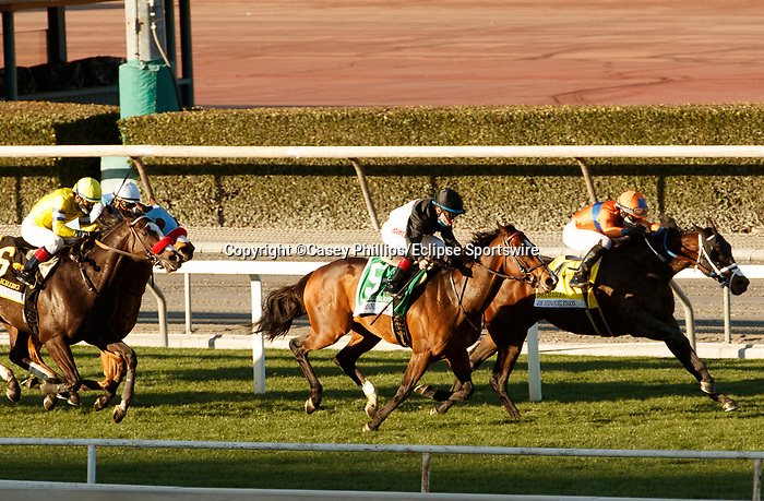 ARCADIA, CA JANUARY 1: #4 Hembree, ridden by Joel Rosario, battles #5 True Valour, ridden by Drayden Van Dyke, in the stretch of the Joe Hernandez Stakes (Grade ll), on January 1, 2021 at Santa Anita Park in Arcadia, CA.(Photo by Casey Phillips/EclipseSportswire/CSM)