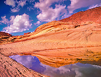 Rain water pond. Vermillion Cliffs Wilderness, Utah/Arizona