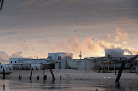 Oyster Industry wharf and shipping sheds at sunset, Bivalve, New Jersey